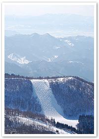 藏王溫泉滑雪場雪道介紹